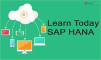 SAP HANA Role Based Training by ZaranTech