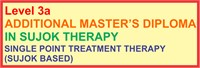 Level 3a : Additional Master's Diploma in Sujok Therapy