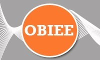 OBIEE 11g Training Program – Development & Administration