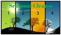 21 Day Seasonal Cleanse Free Preview